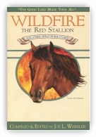 Wildfire the Red Stallion